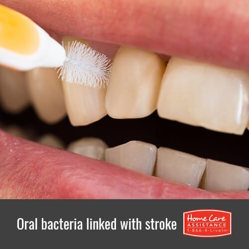 How Oral Bacteria Is Linked with Stroke Risk in Dayton, OH