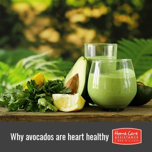 Why Avocados Are Heart Healthy Options for Seniors in Dayton, OH