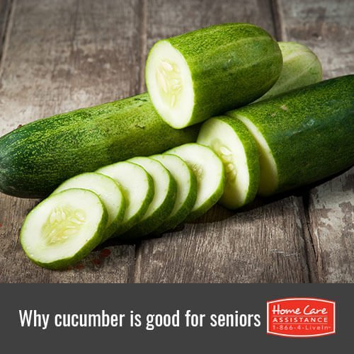 Why the Elderly Should Eat More Cucumber in Dayton, OH