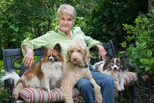 Older woman with three pet dogs on a bench outside in Dayton, OH